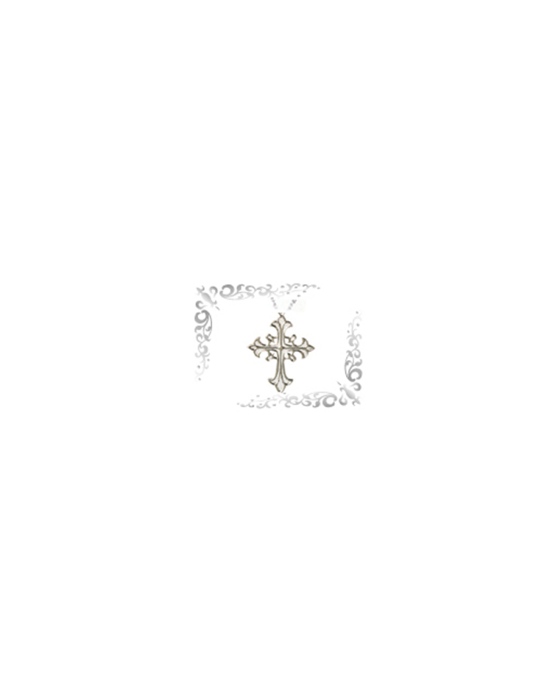 Titanium necklace (mesh) cross silver [Horie / Horie]
